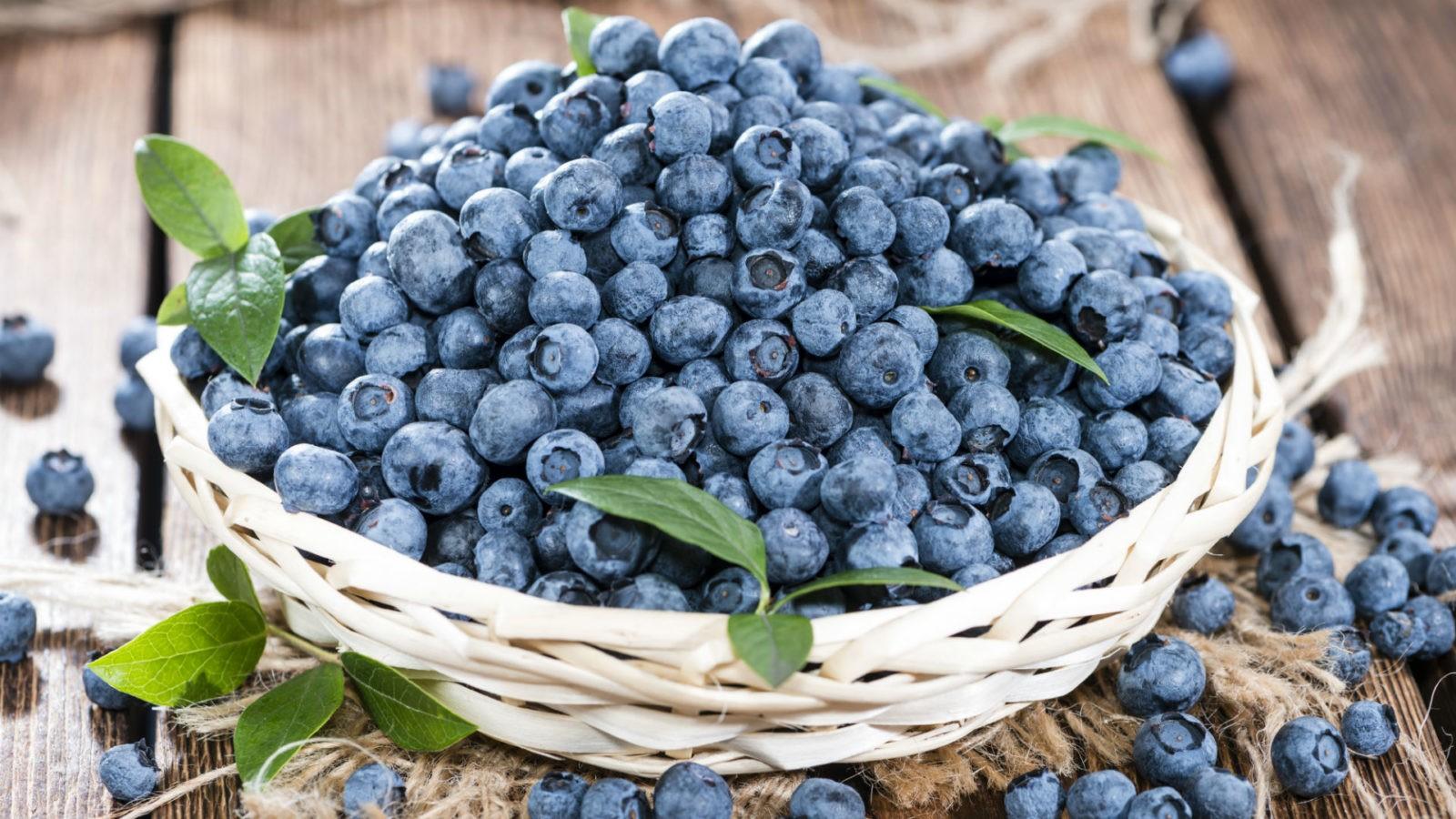 Черника – это кладовая полезных веществ и витаминов