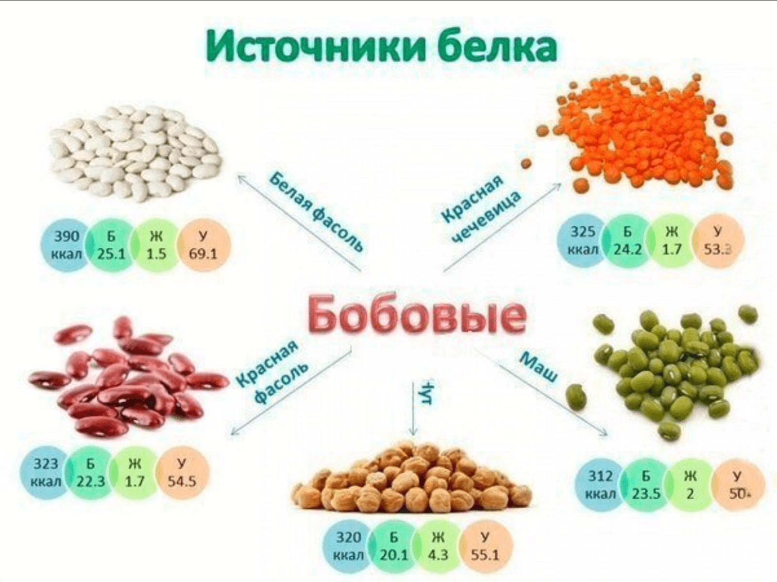 Калории и пищевая ценность фасоли