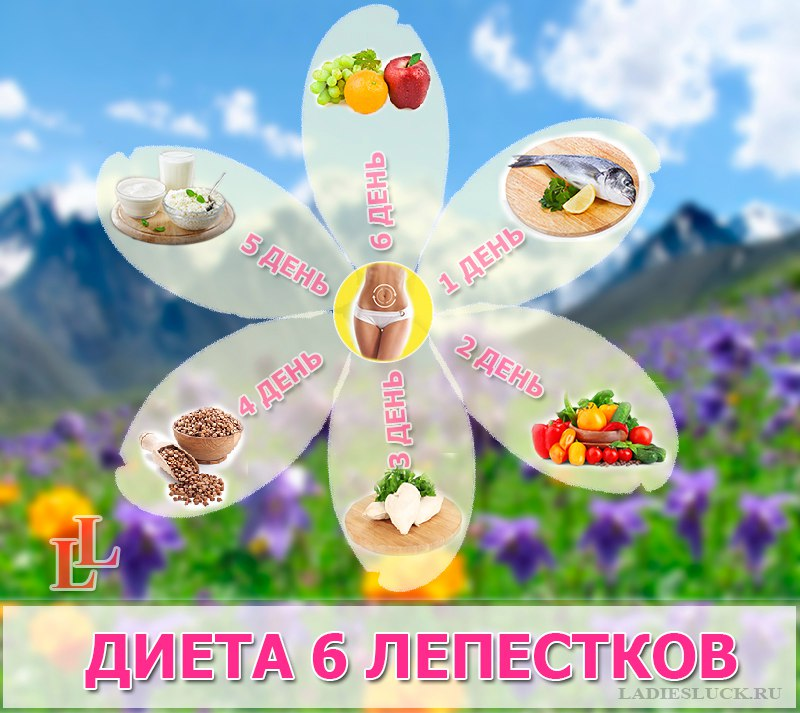 Суть диеты 6 лепестков