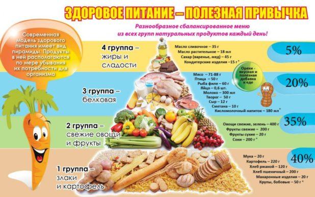 Система правильного сбалансированного питания