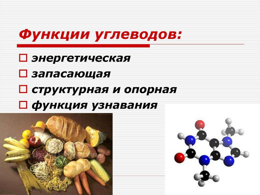 Общая характеристика углеводов