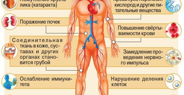 Как сахар влияет на организм человека