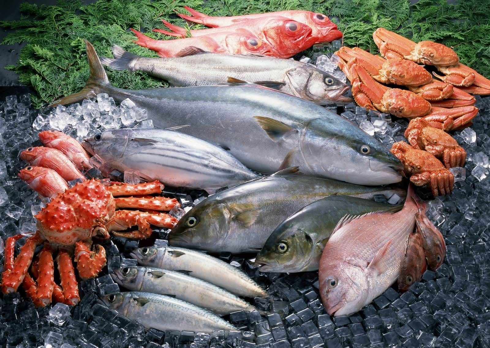 Свойства рыбы